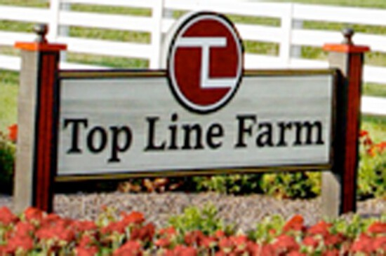 Dispersal of Top Line Farm Machinery, Equip Cattle