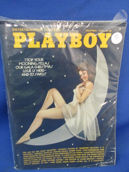 "Playboy Magazine – December 1973 - ""The Art of the Pin-up Revisited"""