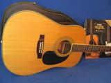 Hohner Professional Acoustic Guitar Model HW720S – Hard Case & 2 Books