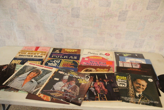 24 Vintage LP Record Albums Elvis, Boots Randolph, Polka's Best, Tribute to Kitty