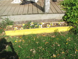 "Yellow Wood Flower Box – 78"" x 11"""