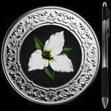 Collectible Floral Emblems - Ontario: White Trillium 2020 RCM 1/4 oz Ag