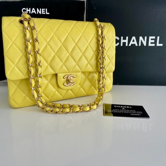 Classic Chanel Medium Double Flap Bag