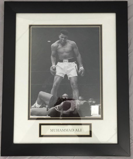 Muhamid Ali Official Picture