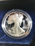 (10) 1 oz American Eagle silver proof coins