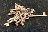 20+ Vintage Skeleton Keys