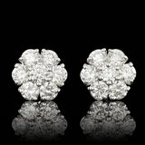 14k White Gold 2.75ct Diamond Earrings