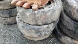 (3) Solid Skidsteer Tires
