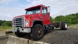 1986 International 1954 Cab & Chassis