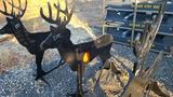 AR500 Deer target with Heart Flapper
