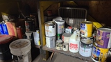Contents of paint cabinet