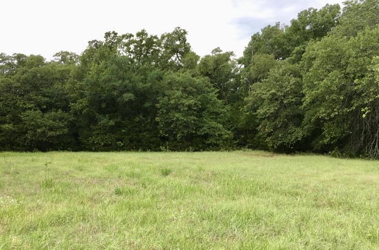 Tract 3: 55 acres w/large stock pond on sandy loam soil and a nice mix of pasture and mature trees