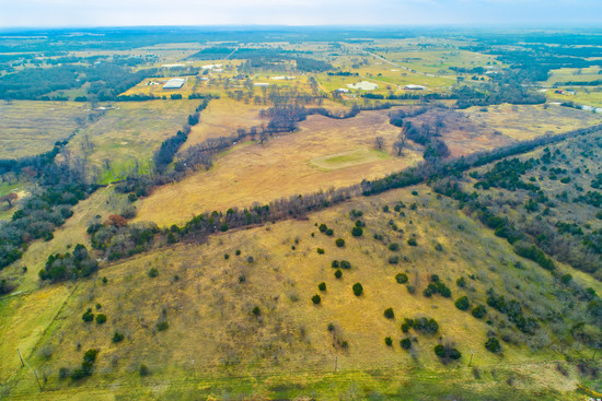 Tract 3: 56.9 acres of improved pastures with a nice mix of trees and a running creek