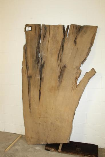 """One Locally salvaged Live Edge Asymmetrical Sinker Cypress Slab;  approx. 2"""" thick x 4' wide x 80"""" t"""