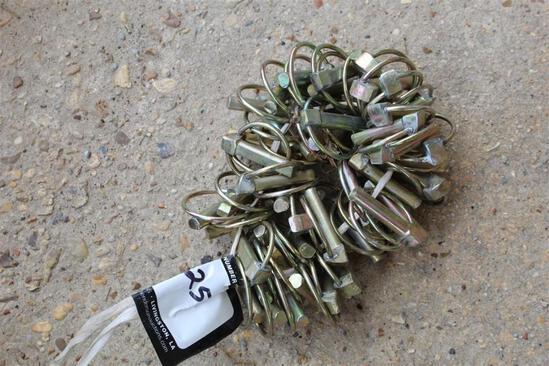FORD LYNCH PINS BUNDLE OF 50
