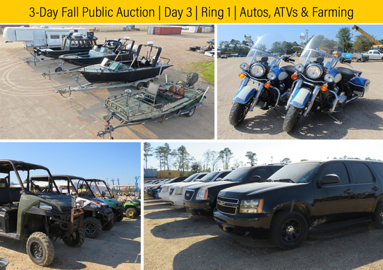 3-Day Fall Auction | Day 3 | October 16th