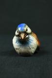 Goebel Bird