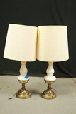 Pair of Lamps with Brass Base