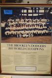The Brooklyn Dodgers 1955 World Champs Picture