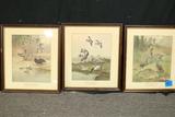 6 Bird Prints By Lynn Bogue Hunt