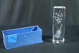 Glass Etched Prism In Box