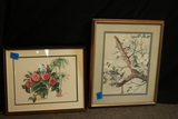 Bird Print & Floral Print