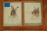 4 Framed Animal Prints