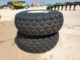 (2) Boll Buggy Wheels/Tires