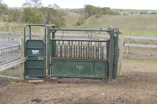 Big Valley cattle chute w/self catching head gate