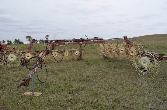 Daco 6 Wheel Rake