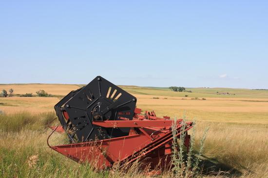 Hesston 21' Grain Head