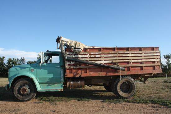 1967 Chev C-50 Truck, drill fill, 14' box, 4 spd with 2spd., newer 350 eng., 86,785 mi, SN: CE537J11