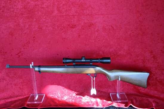 Ruger 10/22 Carbine, 22 LR