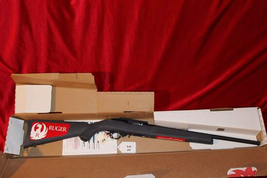 Ruger 10-22, 22 Cal. Auto