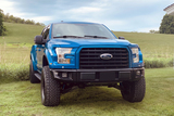 2015 FORD F-150 CUSTOM PICKUP