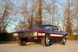1969 FORD SHELBY GT350 CONVERTIBLE