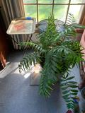 Antique plant stand antique folding table and a live plant