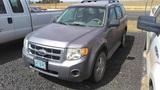 2008 Ford Escape Compact SUV