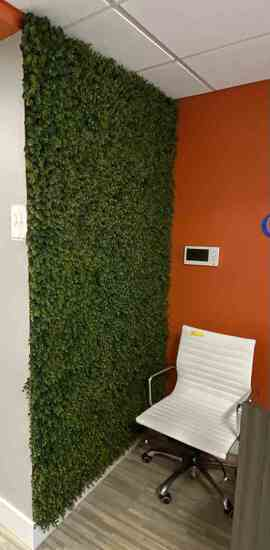 Lot: Artifical Plant Wall Display                                R1