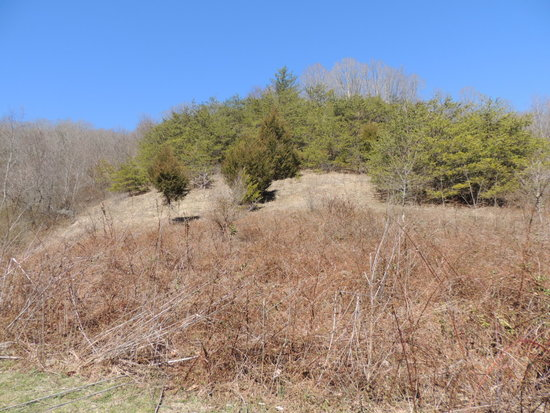 31.69 Acres Recreational & Hunting Land