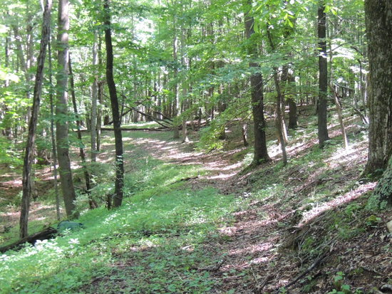 24 Acres of Recreational Land with Home Sites
