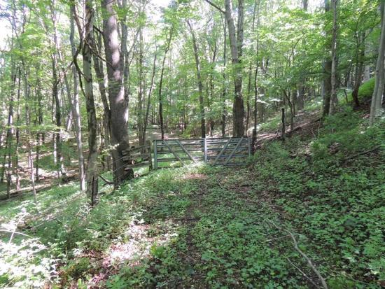 24 Acres of Recreational Land with Potential Home Sites