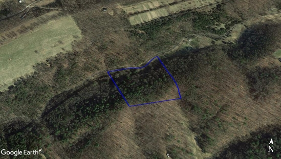 Absolute Real Estate Auction - Home on 9.5 Acres.