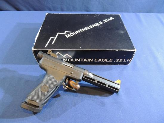 Magnum Research Mountain Eagle 22 LR