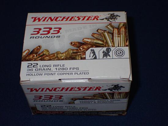 Winchester 22 LR Hollow Point Ammo