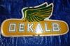 "DeKalb Raised Painted Tin, 28"" x 16"""