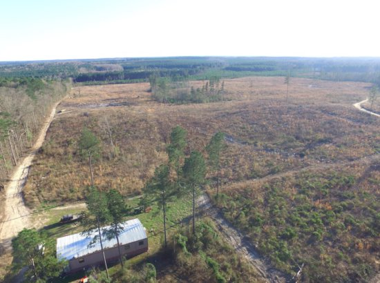 460 Acres of timber land includes 1800 Sq/ft lodge