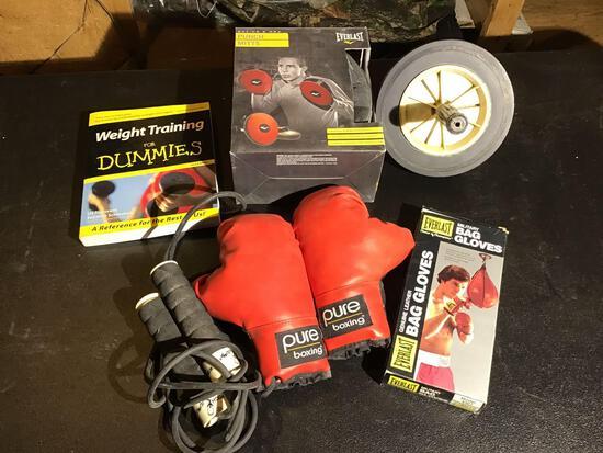 Miscellaneous exercise equipment