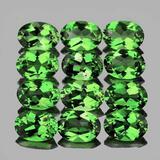 Natural Chrome Green Apatite 12 Pcs (Flawless-VVS)