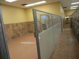 Enclosure Partitions